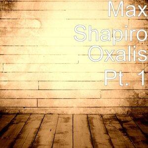 Max Shapiro 歌手頭像