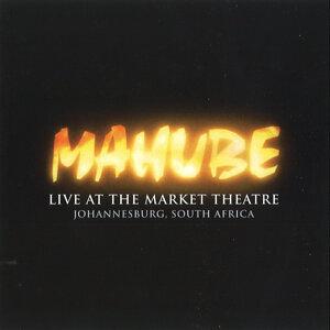 Mahube 歌手頭像