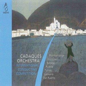 Orquestra de Cadaqués, Gianandrea Noseda, Sir Neville Marriner, Pablo González, Mihail Nesterovich 歌手頭像