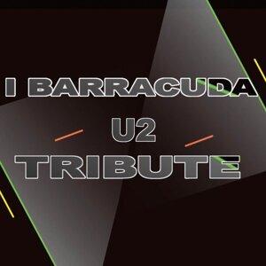 I Barracuda 歌手頭像