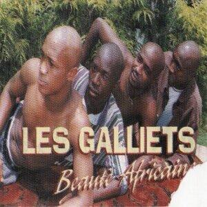 Les Galliets 歌手頭像