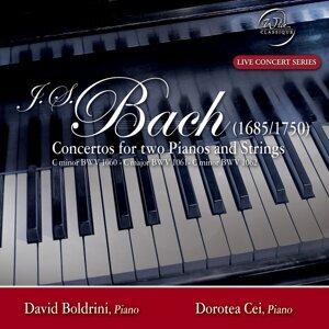David Boldrini, Dorotea Cei 歌手頭像