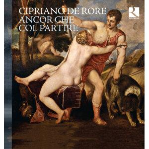 Doulce Mémoire, Vox Luminis, L'Achéron, Ensemble Clematis, Cappella Mediterranea 歌手頭像