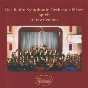 Radio Symphonie Orchester Pilsen 歌手頭像