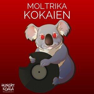 Moltrika 歌手頭像