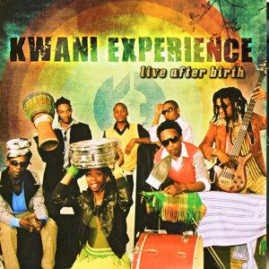 Kwani Experience