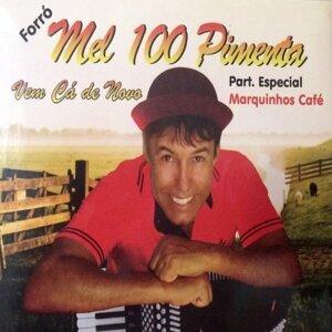 Forró Mel 100 Pimenta 歌手頭像