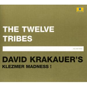 Klezmer Madness!, David Krakauer 歌手頭像