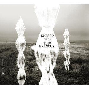 Trio Brancusi 歌手頭像