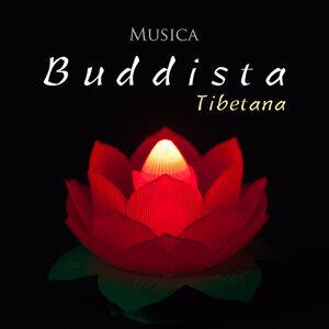 Meditation Relax Club feat. Background Music Club & Esperanza Zen & Saluto al Sole Musica Relax 歌手頭像