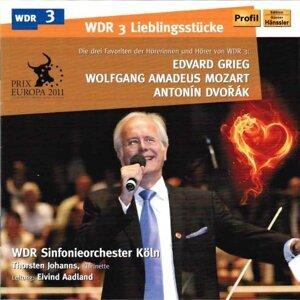 WDR Sinfonieorchester Köln, Eivind Aadland, Thorsten Johanns 歌手頭像