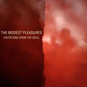 The Modest Pleasures 歌手頭像