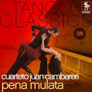 Juan Cambareri 歌手頭像
