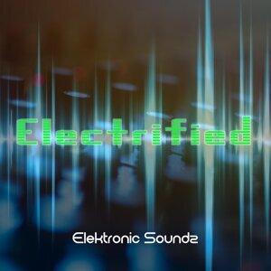 Elektronic Soundz 歌手頭像