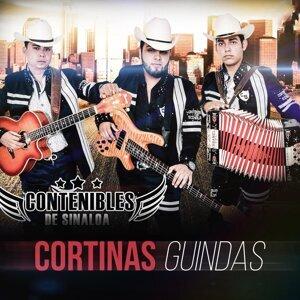 Contenibles De Sinaloa 歌手頭像