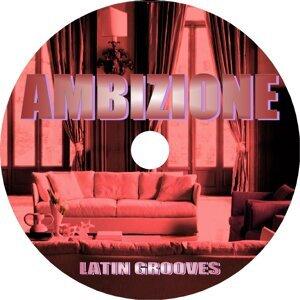 Latin Grooves 歌手頭像