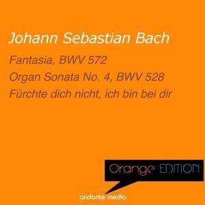 Otto Winter, Rolf Schweizer, Bachorchester Pforzheim 歌手頭像