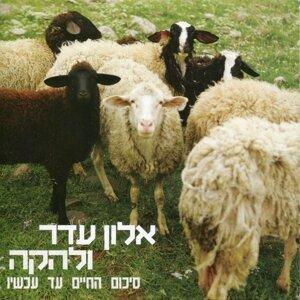 אלון עדר ולהקה