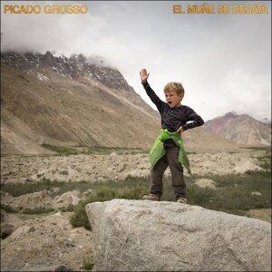 Picado Grosso 歌手頭像