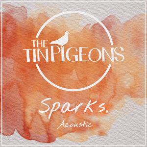 The Tin Pigeons 歌手頭像