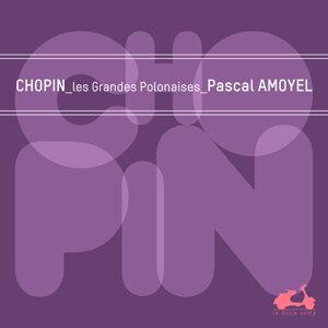 Pascal Amoyel 歌手頭像