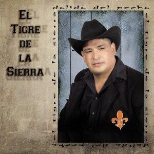 El Tigre de la Sierra 歌手頭像