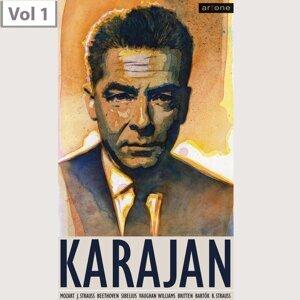 Wiener Philharmoniker,Philharmonia Orchestra, Herbert von Karajan, Leopold Wlach, Dennis Brain 歌手頭像