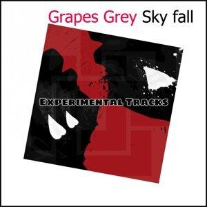 Grapes Grey 歌手頭像