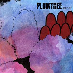 Plumtree 歌手頭像