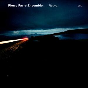 Pierre Favre Ensemble