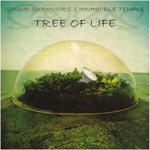 Sound Survivors & Invincible Temple 歌手頭像