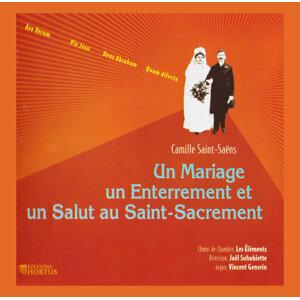 Vincent Genvrin, Joël Suhubiette, Choeur de chambre Les Éléments 歌手頭像