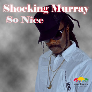 Shocking Murray 歌手頭像