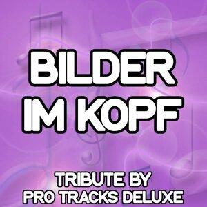 Pro Tracks Deluxe 歌手頭像