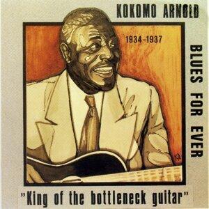 Kokomo Arnold 歌手頭像