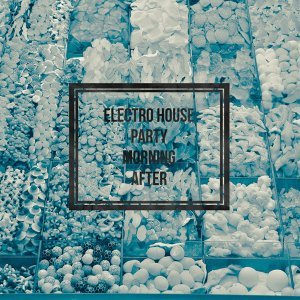 Electro House Party Vol. 2 (Morning After) 歌手頭像
