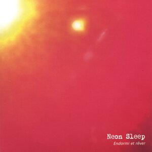 Neon Sleep 歌手頭像
