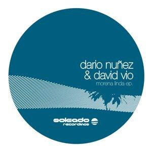 Dario Nunez,David Vio 歌手頭像