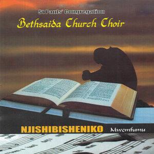 St Paul's Congregation Bethsaida Church Choir 歌手頭像