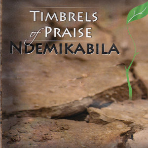 Timbrels Of Praise 歌手頭像