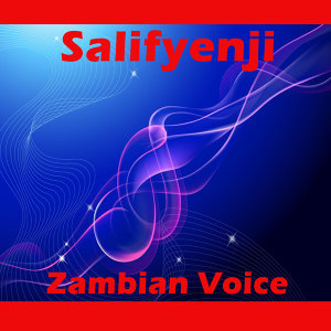 Zambian Voice 歌手頭像