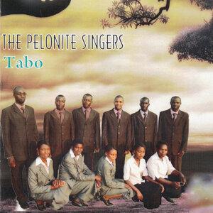The Pelonite Singers 歌手頭像