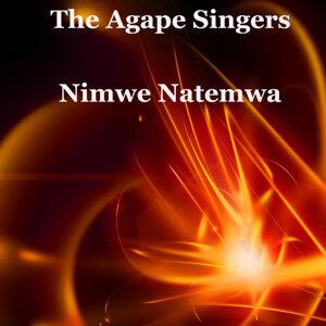 The Agape Singers 歌手頭像