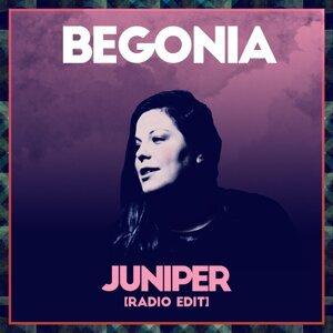 Begonia 歌手頭像