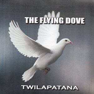 The Flying Dove 歌手頭像