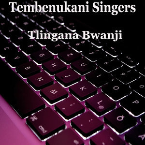 Tembenukani Singers 歌手頭像