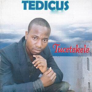 Tedicus 歌手頭像