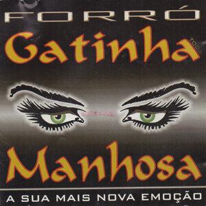 Forró Gatinha Manhosa 歌手頭像