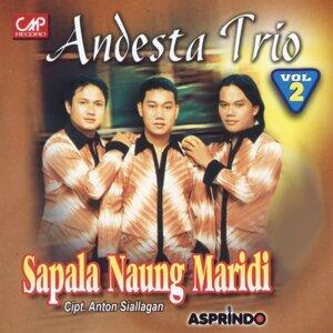 Andesta Trio 歌手頭像