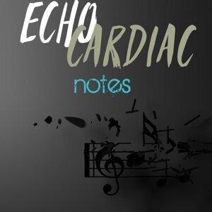 Echo Cardiac 歌手頭像